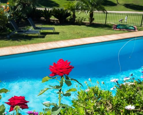 Villa la Toscana pool