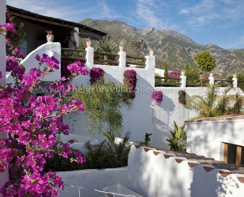 Andalusia Malaga private villa rental