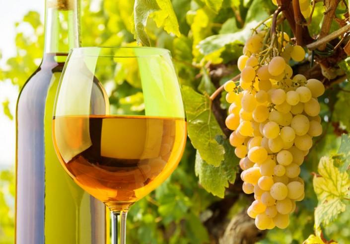 Wines in La Axarquia