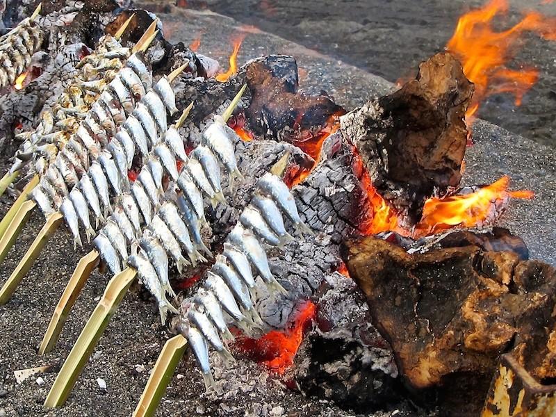 espetos de sardinas, sardines, skewers, andalucia, spain