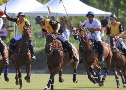 Polo match in Sotogrande, Spain