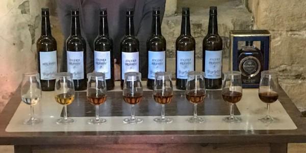 Jerez de la Frontera, Wine tasting