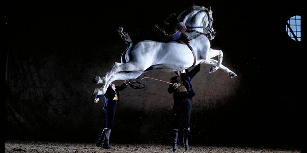 Royal Equestrian School in Jerez
